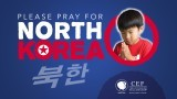 Pray for North Korea vinyl banner