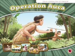 Operation Auca - Flashcard Visuals
